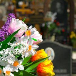 Пластиковые цветы на кладбище-опасность для здоровья и вред для природы